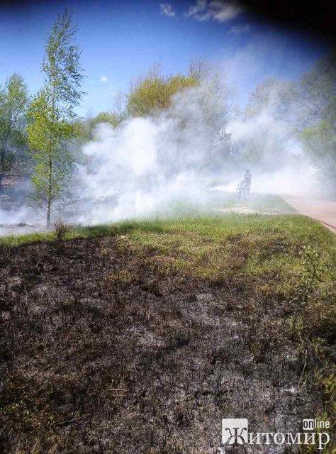 За добу виникло три загоряння сухої трави в Житомирській області. ФОТО