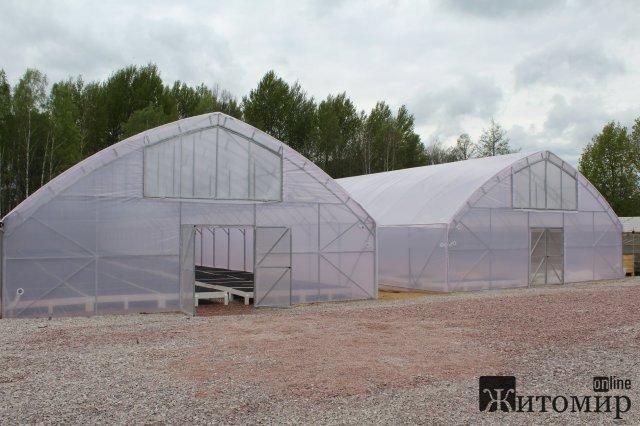 У новому тепличному комплексі Овруцького спецлісгоспу вирощуватимуть 200 тисяч сіянців в рік. ФОТО