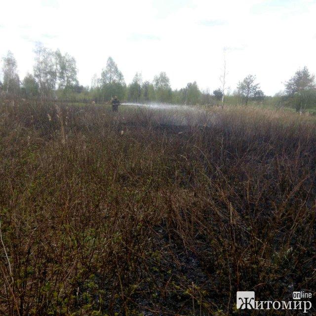 У двох районах Житомирської області горіла суха трава. ФОТО