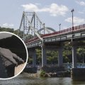 У Києві помер підліток, який стрибнув з моста після смерті батьків від COVID-19