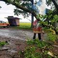 Минулої доби рятувальники відкачували воду в Житомирі та прибирали повалене дерево на дорозі в одному з сіл області. ФОТО