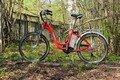 На Житомирщині чоловік двічі намагався вкрасти велосипед