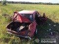 На Житомирщині двоє дітей травмувалися через п'яного водія. ФОТО
