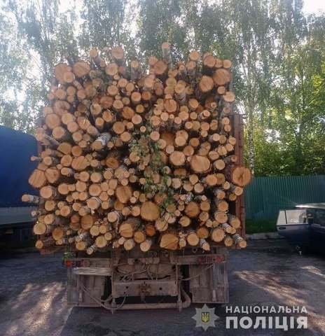 У Новоград-Волинському районі зупинили вантажівку з нелегальною деревиною. ФОТО