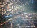 У Баранівці затримали автомобіль з викраденою деревиною. ФОТО