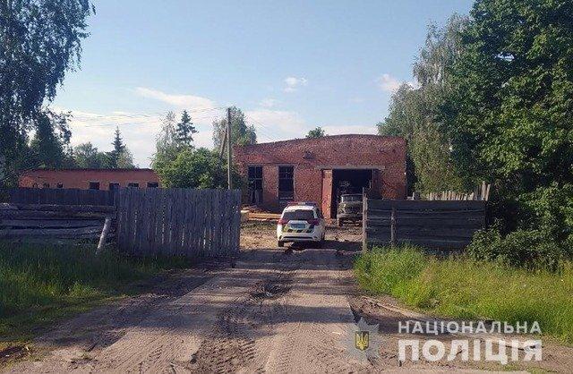 У Коростенському районі виявили нелегальну пилораму. ФОТО