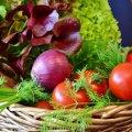 Ціни на овочі в Україні підуть вниз: коли це станеться