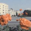 Як виглядала Велика Бердичівська у 80-х роках. ВІДЕО