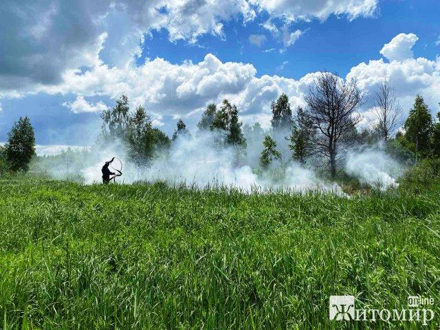На півночі Житомирщини горів торф. ФОТО