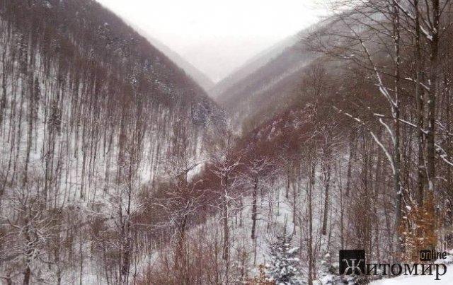 Карпати засипає снігом в середині червня