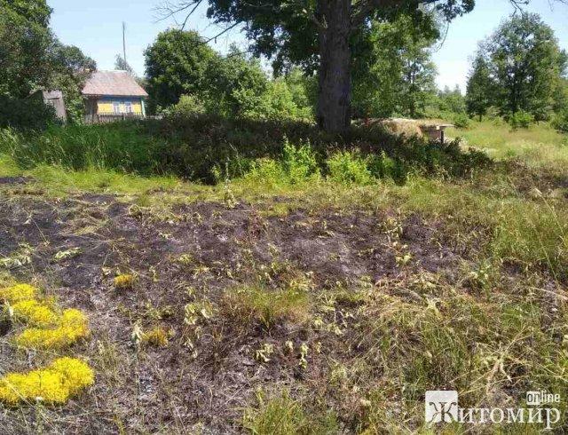 На Житомирщині за добу горіла суха трава та господарча будівля. ФОТО
