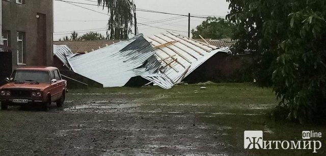 Негода у Житомирській області поламала городину та дерева. ФОТО