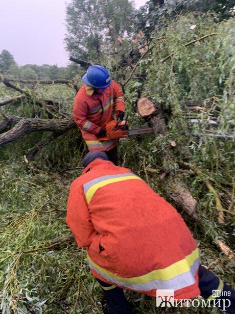 Рятувальники Житомирщини прибирали повалені негодою дерева. ФОТО