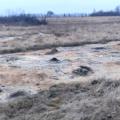 На Житомирщині судитимуть чоловіка, який довгий час забруднював землю хімікатами. ФОТО