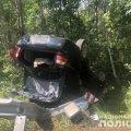 У Житомирському районі водій Opel з'їхав у кювет та перекинувся. ФОТО