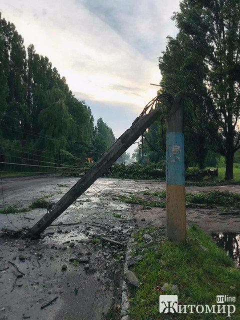 На Параджанова у Житомирі шквальний вітер зламав тролейбусну опору