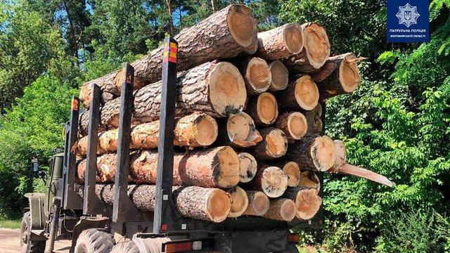 На Житомирщині затримали вантажівку з нелегальним лісом. ФОТО