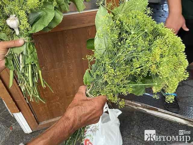 Скільки коштують на ринках області прянощі для консервування огірків? ФОТО