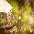 В Україні не вщухають дощі та грози