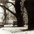 Унікальне фото житомирського парку імені Гагаріна 1962 року