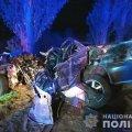 На Хорошівщині Peugeot вщент розбився о дерево. ФОТО