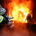 У Коростені люди зазнали опіків через пожежу під час публічного заходу