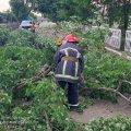 Рятувальники Житомирщини розповіли, що наробила негода в області. ФОТО