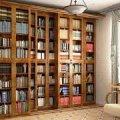 Книжный шкаф: особенности выбора