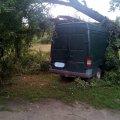 На Житомирщині одне дерево впало на машину, інше - перекрило дорогу. ФОТО