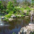 У коростенському парку підліток упав з 10-метрової висоти на кам'яний виступ скел