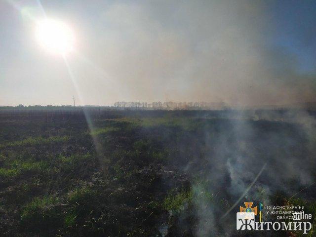 У Житомирському районі рятувальники виїжджали гасити займання сухої трави. ФОТО