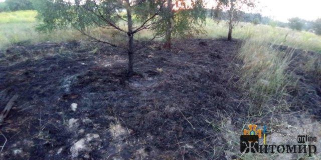 За добу рятувальники гасили займання сухої трави та сміття в Житомирському районі. ФОТО