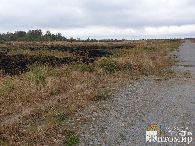 На Житомирщині рятувальники ліквідували займання сухої рослинності на площі 2 га. ФОТО