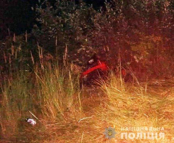 У Пулинській громаді водій мотоблока з'їхав у кювет та загинув. ФОТО