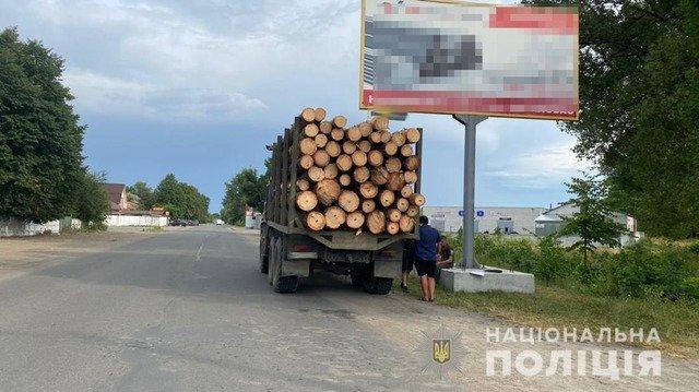 На Житомирщині у двох громадах затримали вантажівки з нелегальною деревиною. ФОТО
