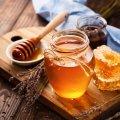 На Михайлівській в Житомирі відбудеться бджільницький ярмарок