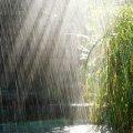 Якою сьогодні буде погода у Житомирі та області?