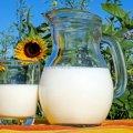 В Україні злетіла ціна на молоко: названа причина подорожчання