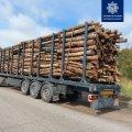 На Житомирщині зупинили вантажівку з нелегальною деревиною. ФОТО