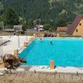 В Карпатах корова прыгнула в бассейн с туристами и совершила заплыв. ВИДЕО
