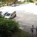 У Житомирі в дворі водій на очах у дітей переїхав собаку. ВІДЕО