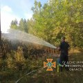 За добу вогнеборці Житомирщини ліквідували 16 загорянь на відкритій території. ФОТО