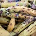 Скільки сьогодні коштують достиглі банани у найбільшому житомирському маркеті? ФОТО