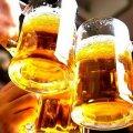 Що цікавого буде в Бердичеві на Святі пива