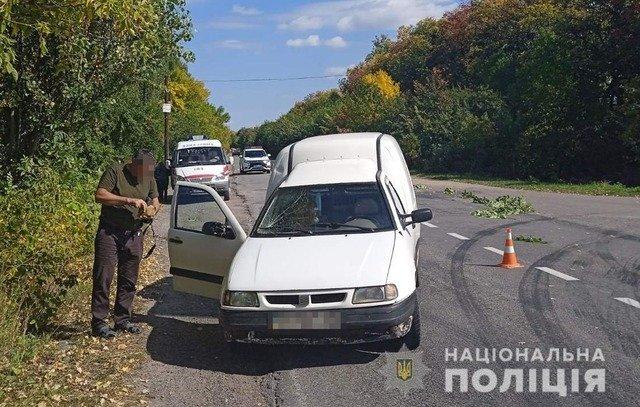 У Бердичівському районі велосипедистка травмувалася внаслідок ДТП. ФОТО