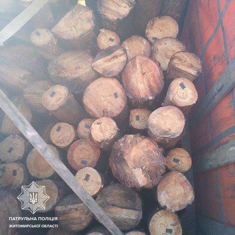 На Житомирщині затримали вантажівку з нелегальною деревиною. ФОТО