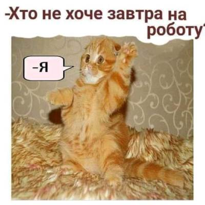 КАРИКАТУРА ДНЯ!