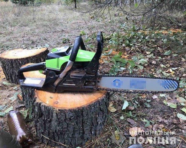 На Черняхівщині затримали двох місцевих жителів, які вирубували ліс. ФОТО