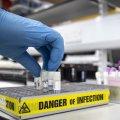ВООЗ відрапортувала про новий штам коронавірусу, який знаходять у третини хворих в Америках