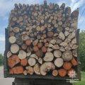 На Житомирщині виявили вантажівку з нелегальною деревиною. ФОТО